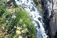 cascade-deroc-aubrac-4